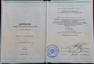 Диплом Института Сурикова