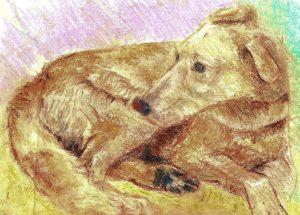 El can