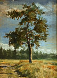 El pino solitario